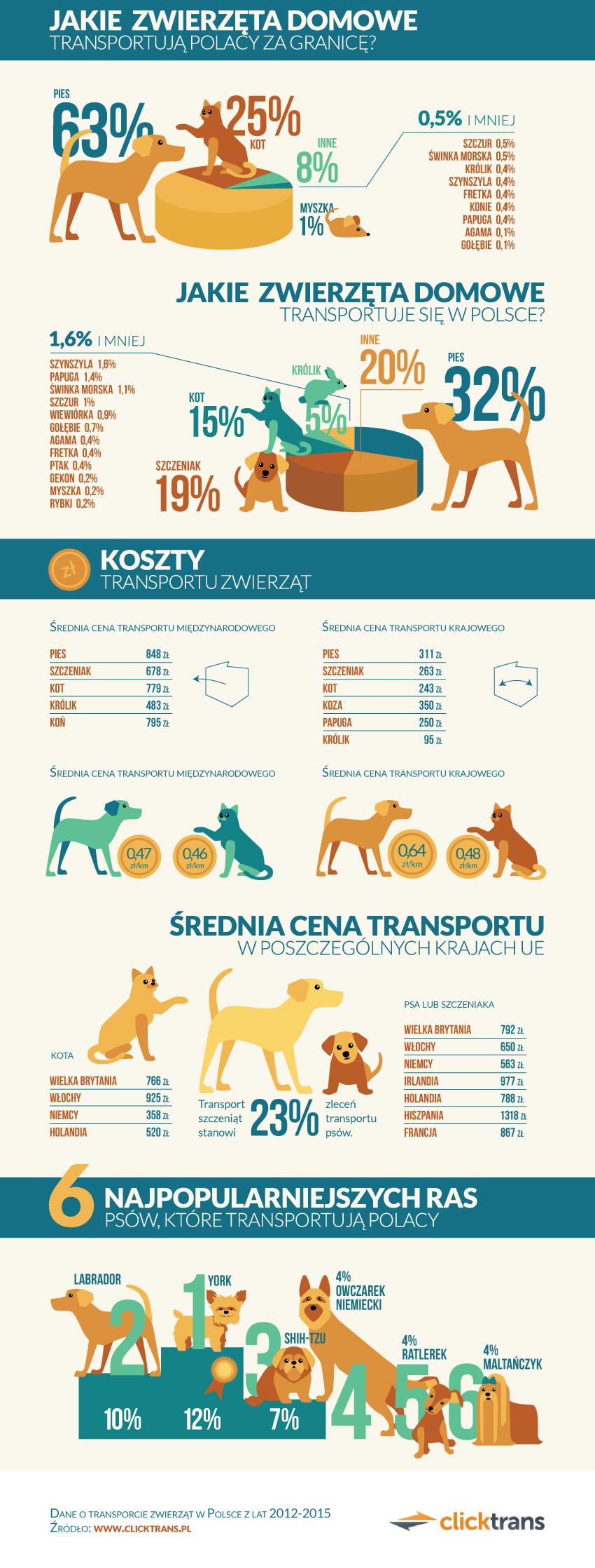 infografika_clicktrans_zwierzeta