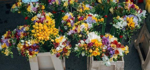 Jak zorganizować transport kwiatów?