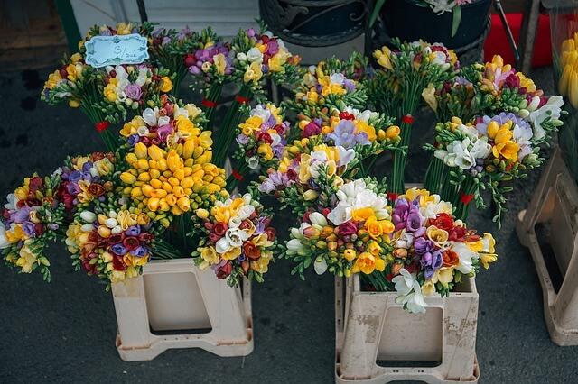 Jak Zorganizowac Transport Kwiatow Blog Clicktrans