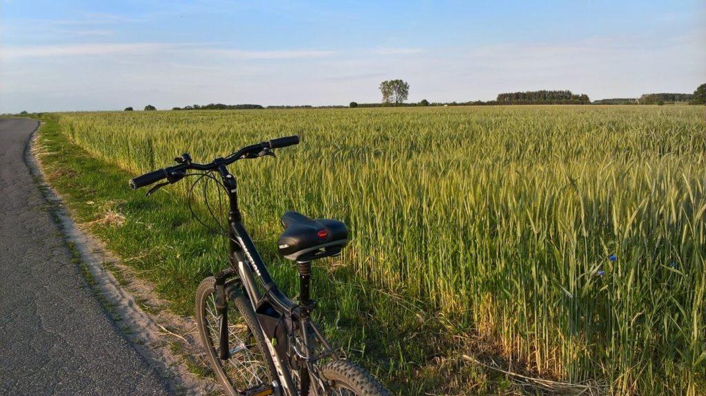 ulubiona trasa rowerowa mazowieckie