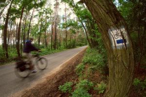 wielkopolskie trasa rowerowa