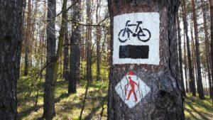 Znaki na ścieżce