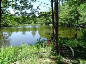 ulubiona trasa rowerowa łódzkie II miejsce