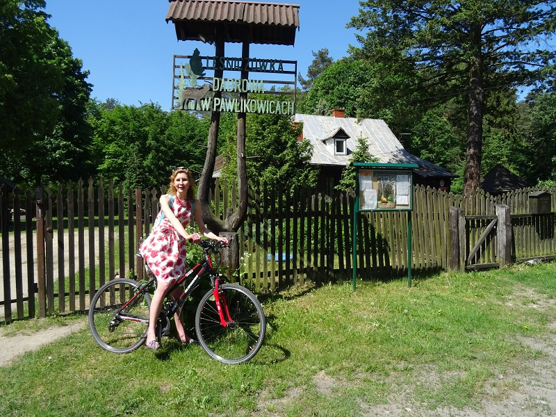 wycieczka rowerowa pabianice