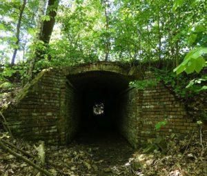 tunel kolejki wąskotorowej lubuskie