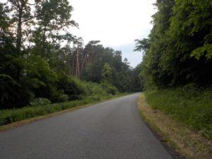 ścieżka rowerowa lubuskie