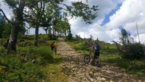 ścieżka rowerowa rysianka