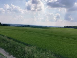trasa rowerowa lichynia