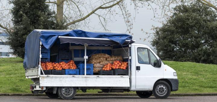 jak zorganizować transport żywności