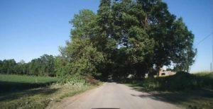 ścieżka rowerowa Olbrachcice
