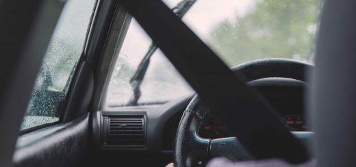 Z biologicznego punktu widzenia o zawodzie Kierowcy